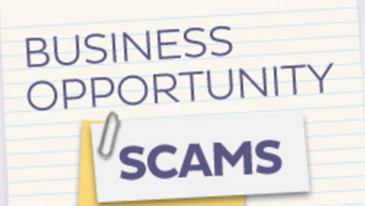 opportunity_or_scam