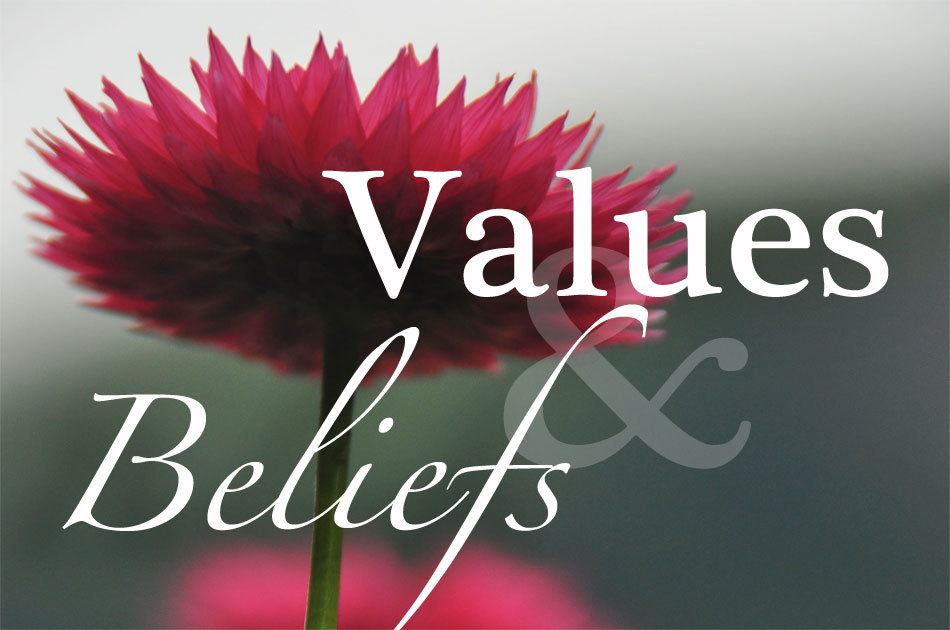 Product beliefs and values